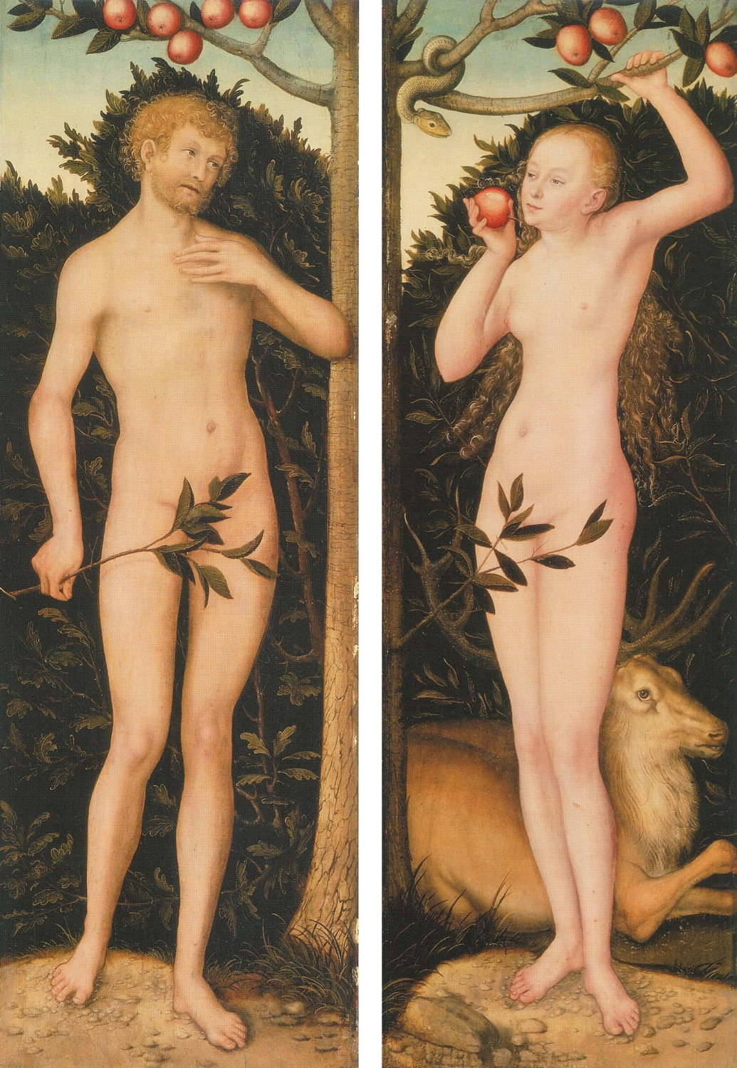 Lucas Cranach (1509-1533) painted this one of his many versions of Adam and Eve.