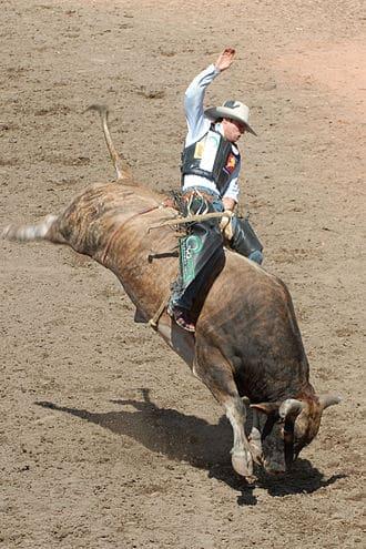 330px-Bull-Riding2-Szmurlo