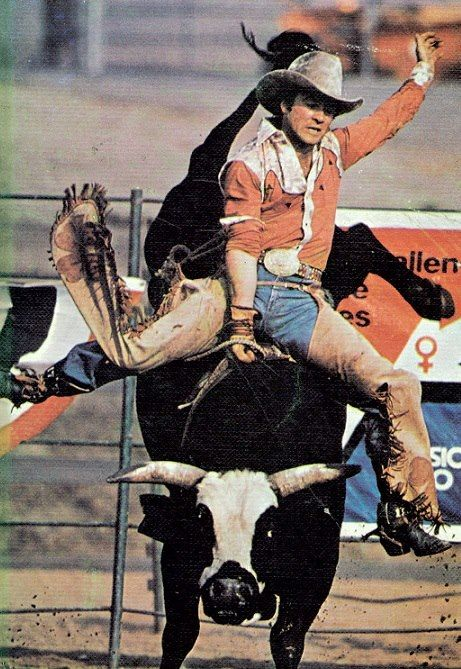 Larry Mahan rides a bull. 1972 was not a good year for the winner of Rodeo Cowboy of the Year title. However, in 1972, Larry came to the World Series with only $22,327. His winnings were so far behind Bobby Steinar, who had taken the rodeo through a quiet series of championships. It was Larry who produced vivid quotes picked up by a grateful media to describe 1972's World Champion. Larry decided to befriend me, which he did telling vivid rodeo stories and observations. On one occasion, Larry nearly slugged me at the Gusher Club after returning from three hours of rodeo to several hours of non-stop drinking. Larry was sitting with a stunningly beautiful blonde Playboy model when I arrived. His hat was on a chair. I picked up the hat. Suddenly, amiability was replaced by rage. A quickened set of danger threatened until Peter Gent, author of Dallas Noth 40, grabbed Larry around his arms so he could not slug me.