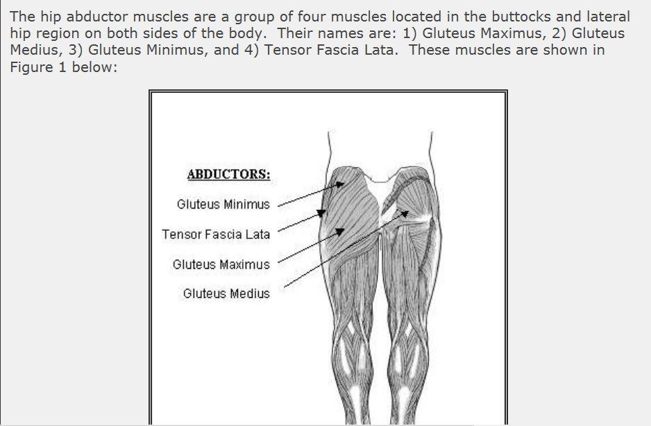 Courtesy: www.athleticquickness.com